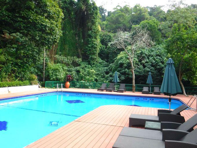 日中は緑に囲まれたプールで寛ごう!