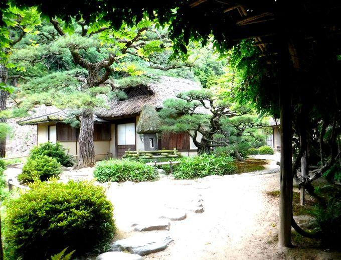 歴代大名が愛した栗林公園の茶室