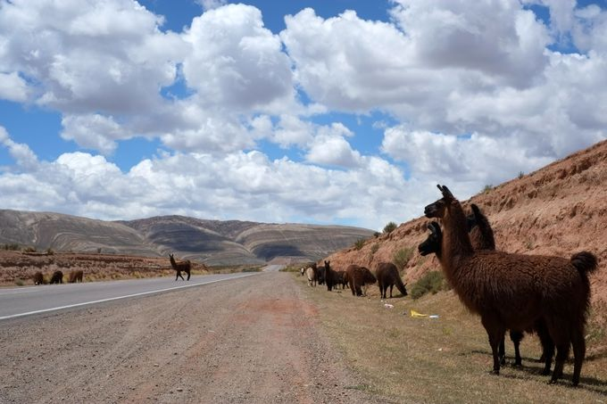 アンデスの景色を満喫!絶景ドライブ