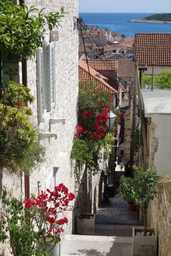 路地裏さんぽへ出かけよう!趣のある旧市街