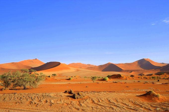 ナミブ砂漠の最奥部・ソススフレイへ