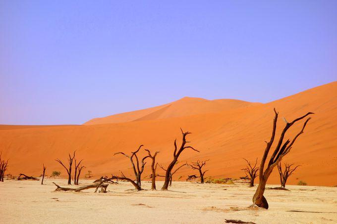 900年前から干からびている「死の沼」