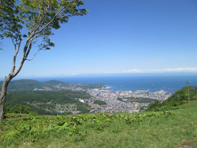 小樽天狗山でパワーをもらう!森林ウォークと天狗山神社