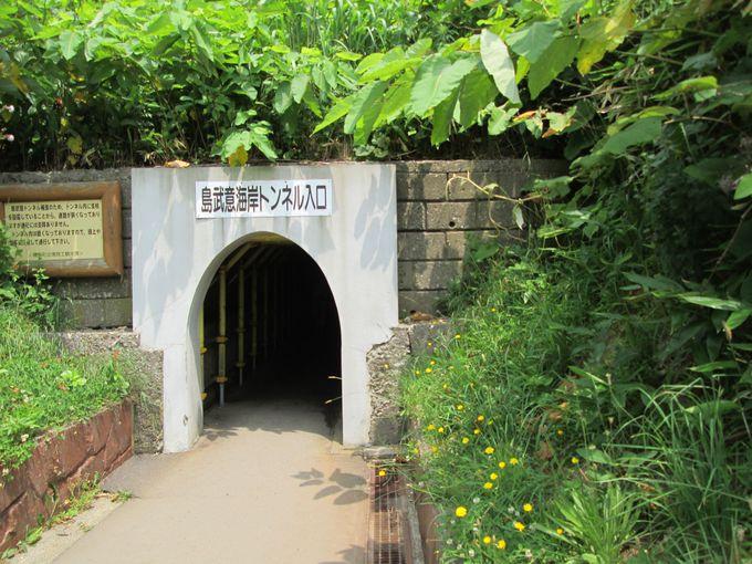 明治時代に作られた小さなトンネルは非日常の空間!