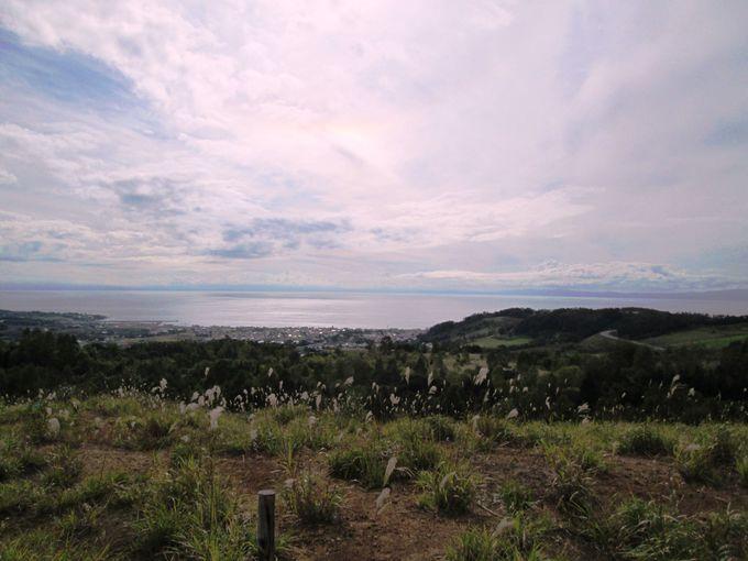 展望台から自然がつくり出した美しい景色を眺めよう!