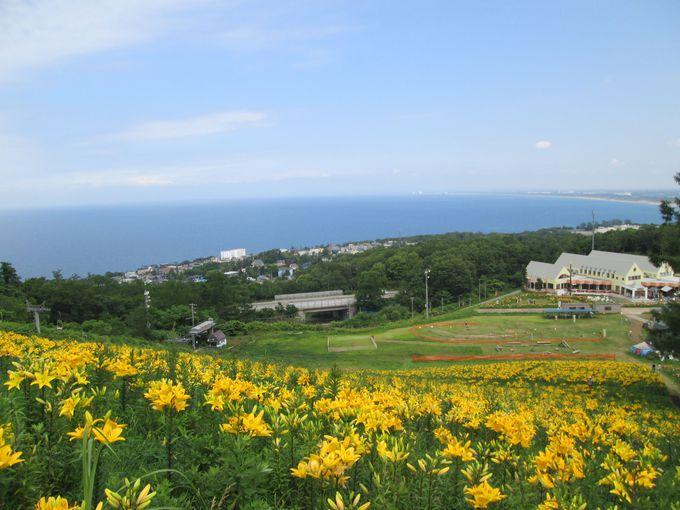 視界いっぱいに広がる青い海!石狩湾を臨む「春香山」