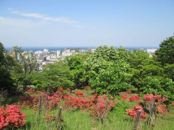 小樽駅から徒歩圏内!豊かな自然が魅力の「小樽公園」