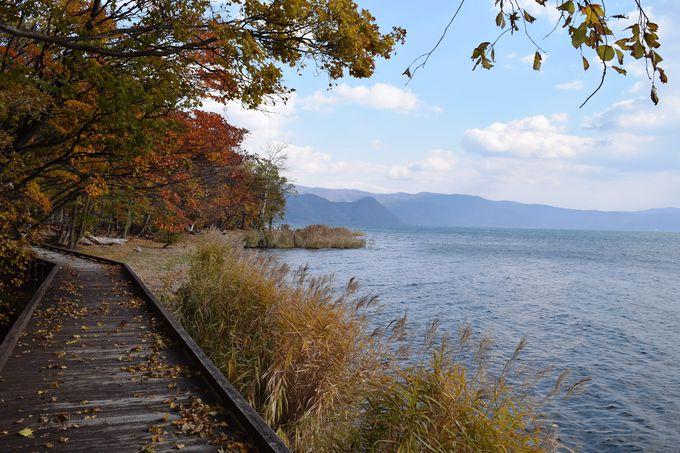 洞爺湖八景「財田湖畔」で洞爺湖の水辺を歩こう!