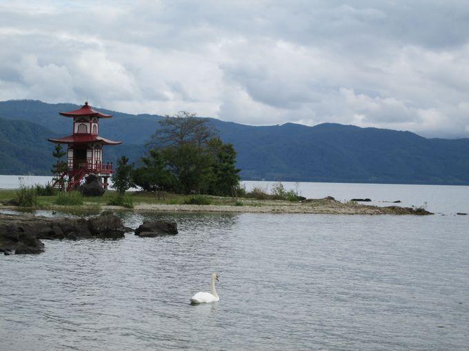二重の塔が美しい「浮見堂公園」は白鳥に会えるかも!?