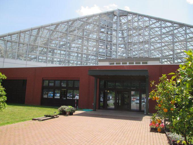 北海道で南国の植物を鑑賞できる!いわみざわ公園「室内公園 色彩館」