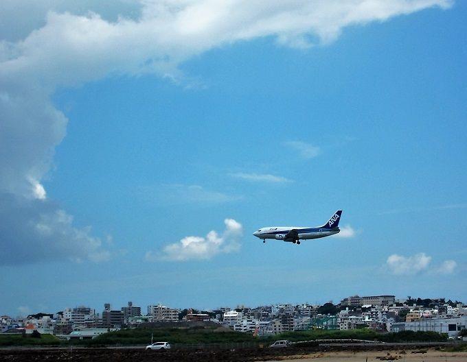 のんびり飛行機を眺めよう