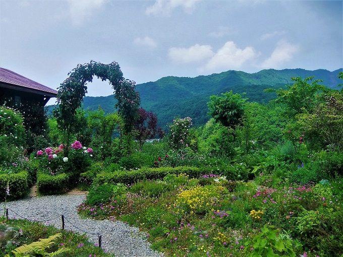 蔵王連山が借景!まるで野山のお花畑みたい