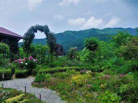 蔵王連山が借景のお庭「ペンションあっぷる」野山のお花畑|山形県|トラベルjp<たびねす>