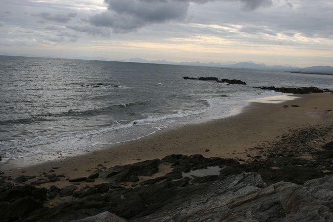 簑島海岸でのビーチバレー全国大会など行橋市はイベントが盛りだくさん!