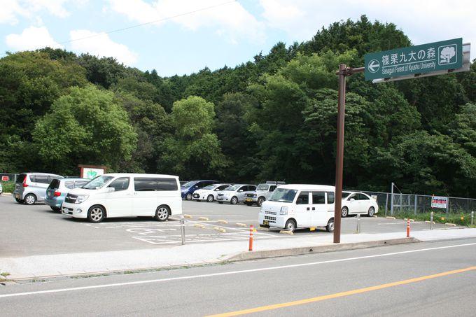 「篠栗 九大の森」は福岡市からバスで30分の近さ
