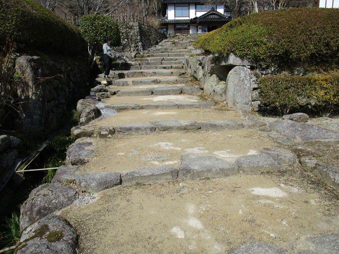 藤江氏は壇ノ浦の戦いに敗れた平家の落人の元公家。第23代当主まで守り続けた庭園