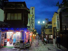 これぞ日本の温泉街!伊香保温泉「雨情の湯 森秋」は黄金の湯かけ流しの老舗宿|群馬県|トラベルjp<たびねす>