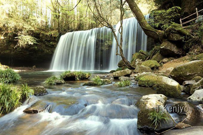 小国町の絶景スポット「鍋ヶ滝」。カーテン状に落ちる滝と新緑が美しい