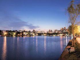 福岡の夜景の新スポット「大濠公園」~SNS映え鑑賞ガイド|福岡県|トラベルjp<たびねす>