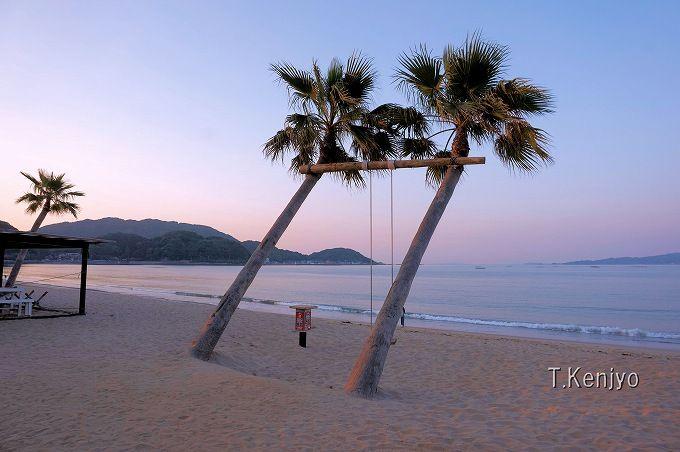 まるで外国のビーチの様!夕暮れの「ヤシの木ブランコ」の幻想的光景にウットリ!