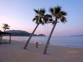 まるで南国の海!福岡・糸島「ヤシの木ブランコ」はオシャレ写真スポット|福岡県|トラベルjp<たびねす>