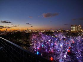 インスタ映えを超越!「福岡城 チームラボ 城跡の光の祭」5つの鑑賞ポイント