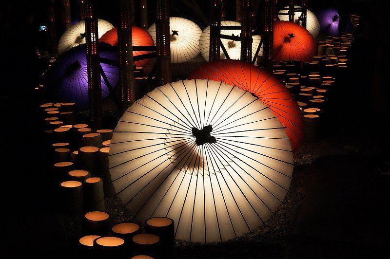 熊本・山鹿「百華百彩」開催中!夜灯りに包まれた冬の祭典