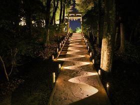 日本屈指のパワースポット、佐賀県にあり!「武雄神社」で縁結びと開運パワーUP!|佐賀県|トラベルjp<たびねす>