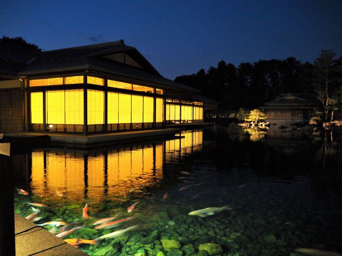 京都迎賓館初の夜間延長公開にあたって一番の撮影ポイントは?