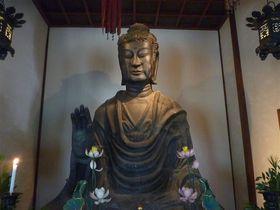 レンタサイクルで仏像巡り!「明日香村」の癒しの仏さま4選|奈良県|トラベルjp<たびねす>
