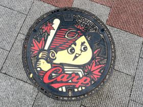 広島駅から気分高揚!マツダスタジアムへ続く真っ赤な「カープロード」|広島県|トラベルjp<たびねす>
