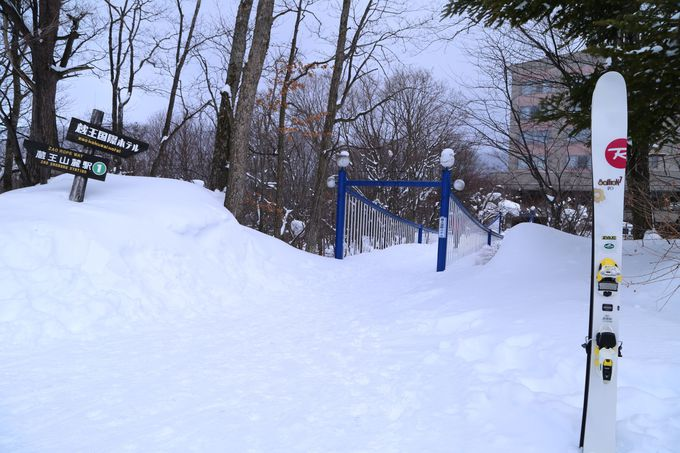 スキーを楽しむ