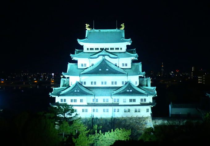 尾張徳川家の居城!名古屋城を堪能しよう