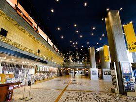 ル・コルビュジエの弟子・前川國男の名建築、上野「東京文化会館」「東京都美術館」を味わう|東京都|トラベルjp<たびねす>