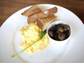 海外セレブが愛した朝食とパンケーキ!bills海外初出店店舗、七里ヶ浜店で世界一の朝食を!