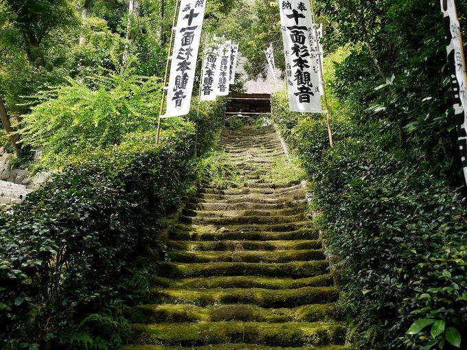 奈良時代建立の鎌倉最古の寺「杉本寺」は苔好き必見