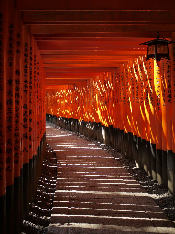 初詣ランキング上位常連の京都伏見稲荷大社。圧巻の千本鳥居まで足を運んでみよう。