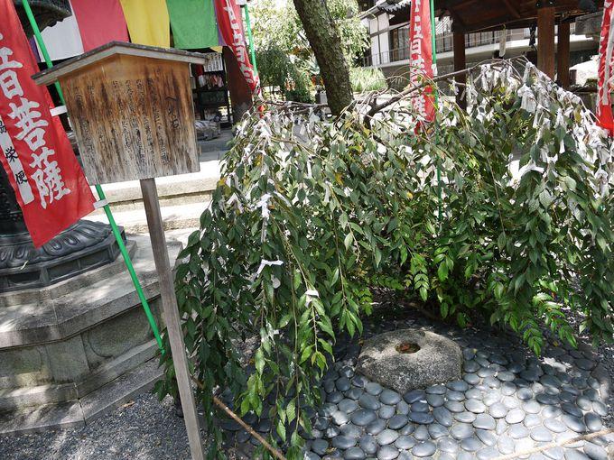 京都の「へそ」