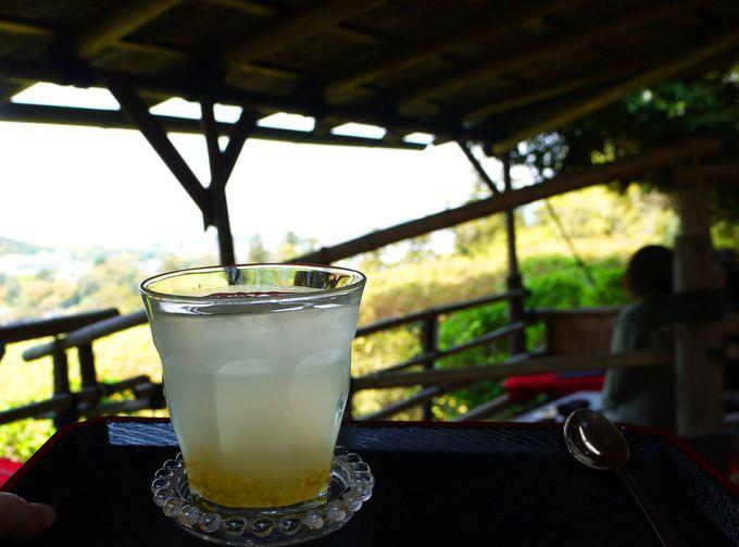 お寺の境内で一休み「円覚寺弁天堂茶屋」