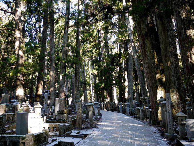 弘法大師入定の場所「奥之院」
