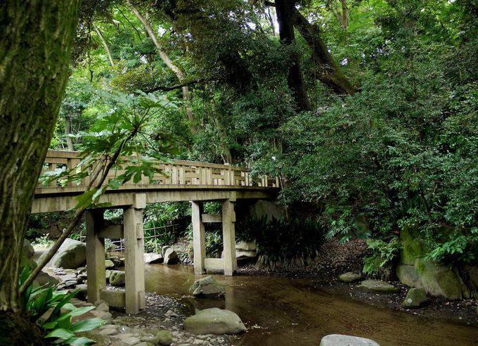 都内に自然豊かな公園!名主の滝公園