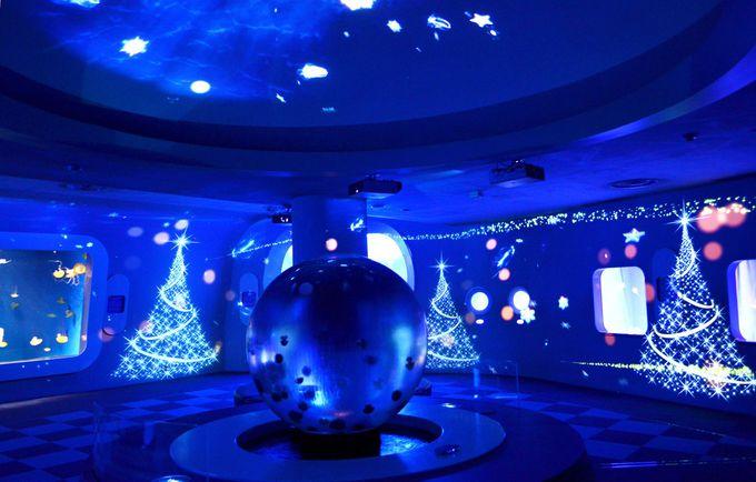 幻想的なクラゲの世界にクリスマスツリーが!