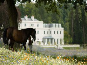 馬と過ごす優雅な休日。英国のエコ、ラグジュアリーホテル「コワースパーク アスコット」