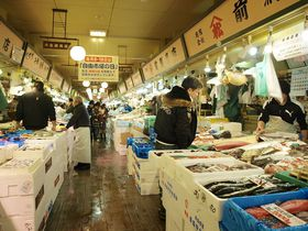 地元人から絶大な信頼!「はこだて自由市場」のおトクな回り方を函館出身者が案内!|北海道|トラベルjp<たびねす>