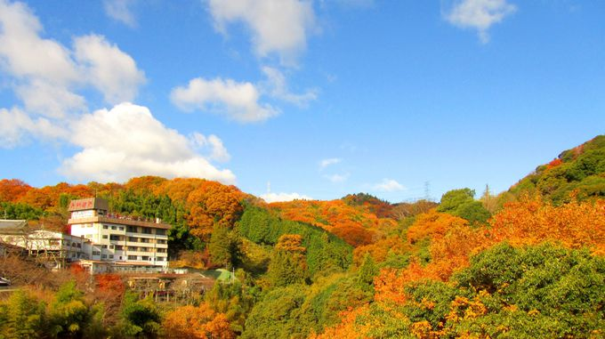 開運橋から望む色づく山