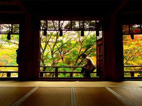 奈良・桜井市「談山神社」で楽しむ紅葉と串こんにゃく|奈良県|トラベルjp<たびねす>