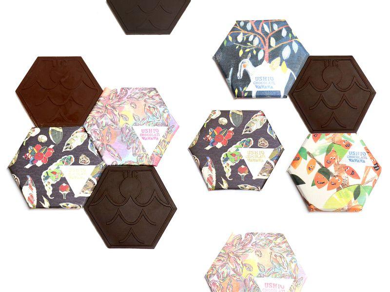 プレゼントに最適!オシャレで本格的な尾道「ウシオチョコラトル」の新鮮チョコ!