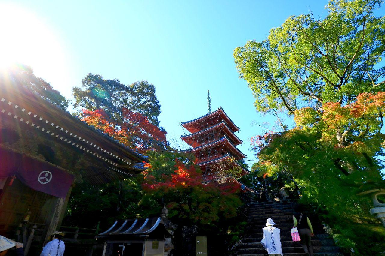 緑豊かな癒しスポット「竹林寺」