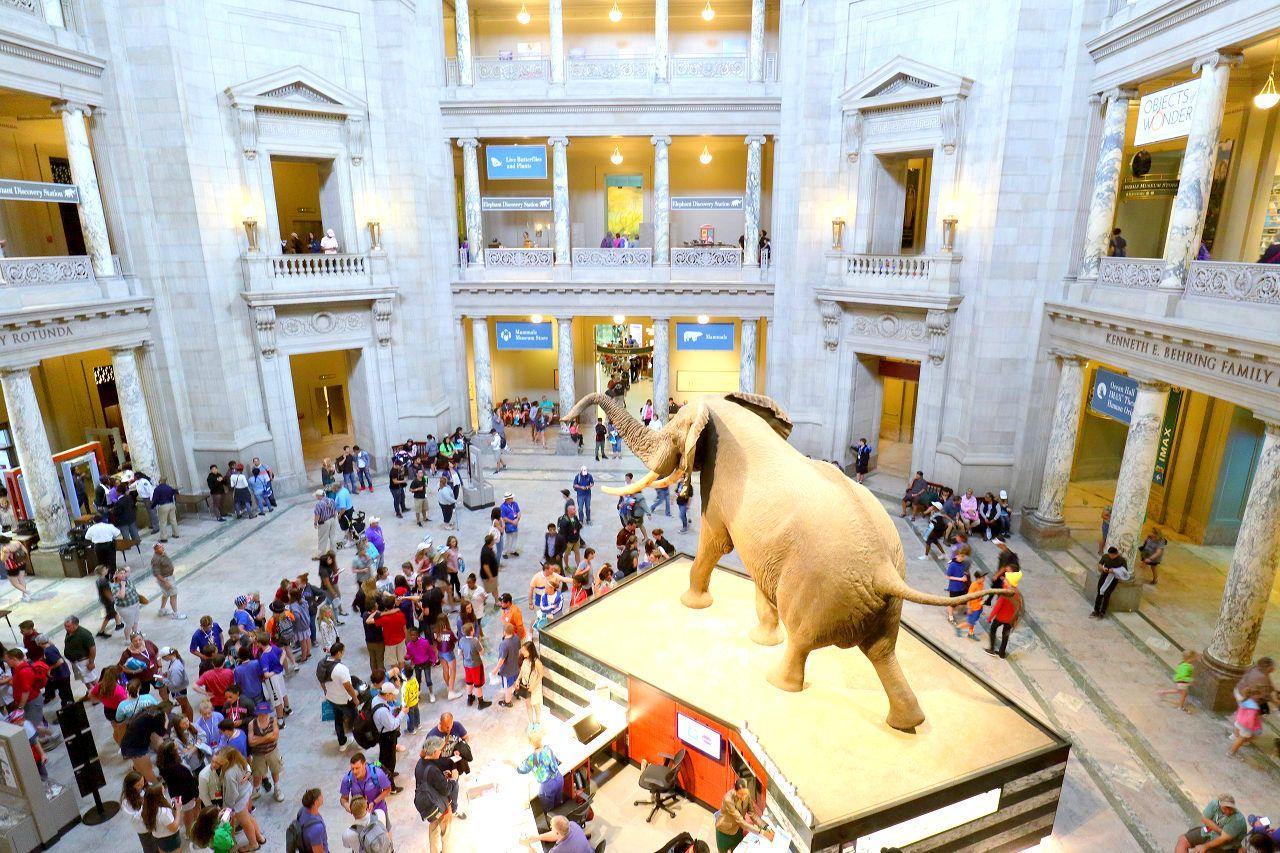 DCにはミュージアムが沢山!