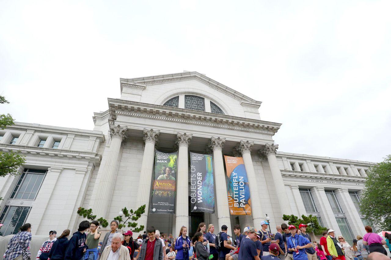 象にダイヤにクジラに骨!?「国立自然史博物館」